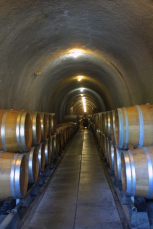 Cycling In Sonoma- Wine Cave